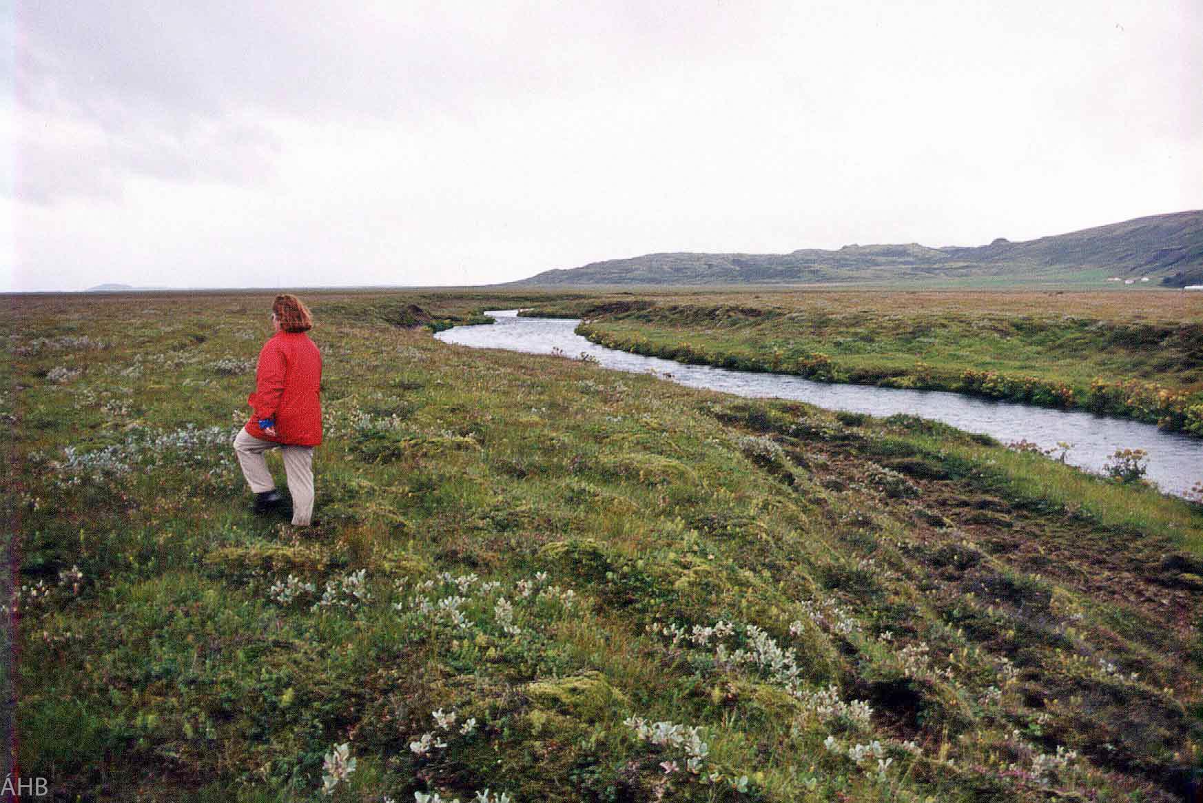Haust 1999. Horft niður með Almenningsá frá norður enda landsins.