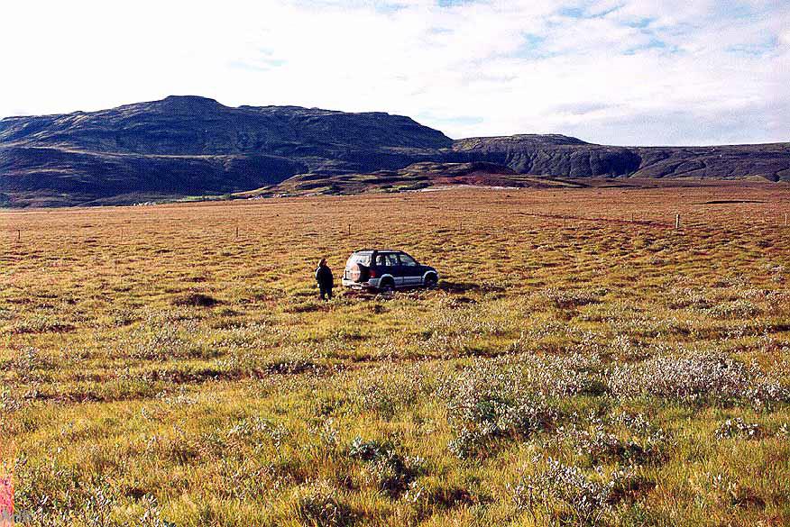 Haustið 1999. Horft yfir landið.