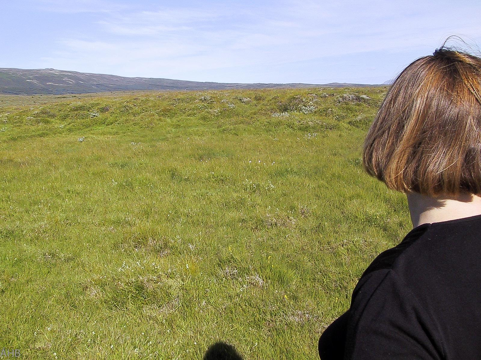 Ágúst 2000. Horftfrá ánni í átt að byggingareitnum tilvonandi.